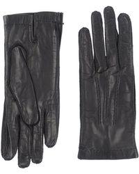 Agnona Gloves - Black