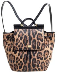 Dolce & Gabbana /brown Leopard Print Leather Miss Sicily Backpack