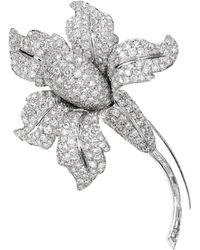 Sabbadini Jewelry Diamond And Platinum Flower Brooch - Multicolor