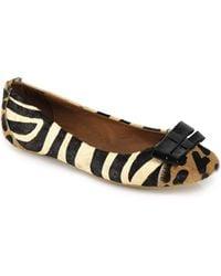 Jeffrey Campbell Kammie - Leopard Ballet Flat - Lyst