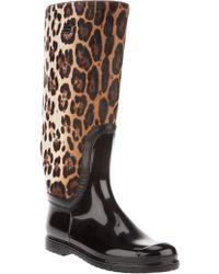 Dolce & Gabbana Leopard Print Boot - Multicolour