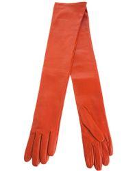 Dries Van Noten - Long Gloves - Lyst