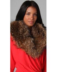 Haute Hippie - Raccoon Fur Collar - Lyst