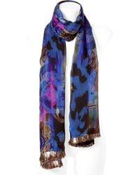 Matthew Williamson - Royal Blue Multicolor Silk Chiffon Scarf - Lyst