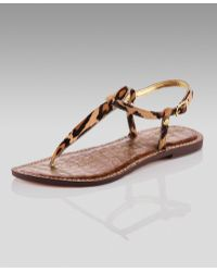 4733e58e392ae Sam Edelman - Gigi Leopard-print Thong Sandal (cusp Most Loved!) -