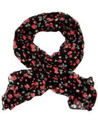 Ollie & Nic - Berry Strawberry Print Scarf Black - Lyst