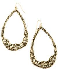Rachel Roy | Gold Tone Crystal Hoop Earrings | Lyst