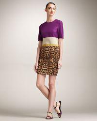 Giambattista Valli Colorblock Leopard Dress - Lyst
