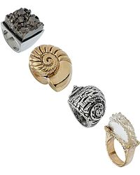 Topshop Shell Four Pack Ring - Lyst