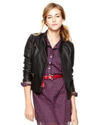 Gap Shrunken Leather Moto Jacket - Black