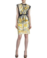 Lanvin Floral Cap Sleeve Dress - Lyst