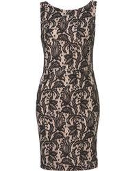 Topshop Bonded Lace Pencil Dress black - Lyst