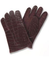 Brooks Brothers Alligator Gloves - Lyst