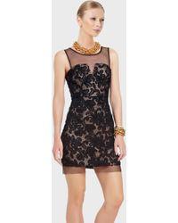 BCBGMAXAZRIA Illusion Yoke Lace Cocktail Dress black - Lyst