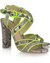 Roberto Cavalli Neon-trimmed Python Sandals - Gray