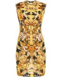 Alexander McQueen Hummingbirdprint Dress yellow - Lyst