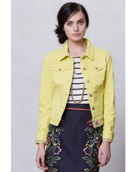 Pilcro - Colored Denim Jacket - Lyst