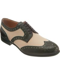 Dolce & Gabbana Stamped Brogues - Lyst