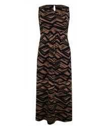 Ann Harvey   Deco Tiger Maxi Dress   Lyst