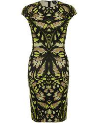 McQ by Alexander McQueen Butterfly Print Dress - Lyst