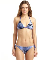 Just Cavalli Blue Snake Print Triangle Bikini - Lyst