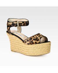 Brian Atwood - Kelsie Leopardprint Pony Hair Raffia Wedge Sandals - Lyst