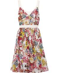 D&G Floral-Print Stretch-Cotton Dress purple - Lyst