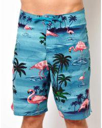 Vans Flamingo Boardshorts - Blue