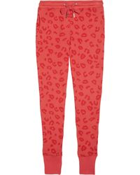 Zoe Karssen Leopard Print Cotton Blend Terry Track Pants - Lyst