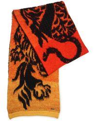Just Cavalli - Tiger Jacquard Wool Knit Scarf - Lyst
