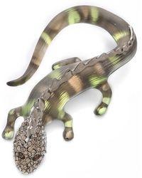 Alexis Bittar Durban Salamander Pin - Grey