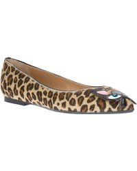 DSquared² Cat Detail Ballet Flat - Brown