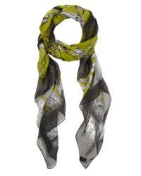 Emma J Shipley - Green Gorilla Print Silk Scarf - Lyst