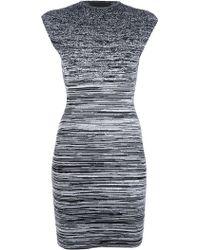 Alexander Wang Degrade Body-Con Dress - Lyst