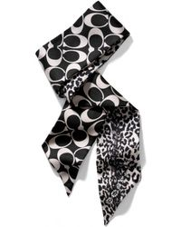 COACH Ocelot Ponytail Scarf with Crystals - Multicolor
