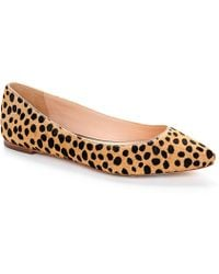 Loeffler Randall Quinnie Pointed Toe Flat - Lyst