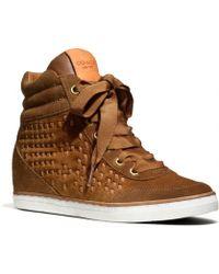 COACH Danae Sneaker - Brown
