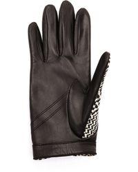 Rag & Bone Beacon Gloves - Black