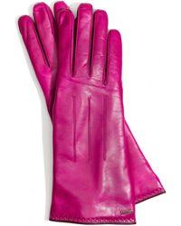 COACH Basic Gloves