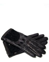 Nina Ricci Lace Cutout Gloves - Lyst
