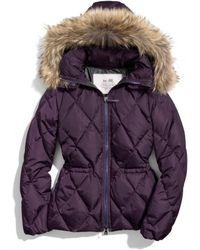 COACH Short Legacy Puffer Jacket - Purple