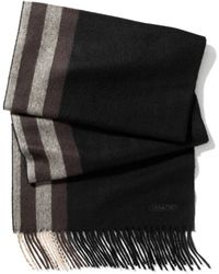 COACH - Cashmere Placed Stripe Scarf - Lyst