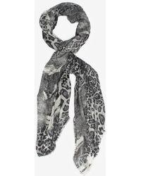 Maison Passage Leopard Print Cashmere Scarf - Gray