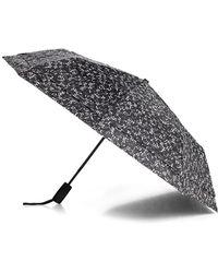 Saks Fifth Avenue Windefyer Logo Umbrella - Black