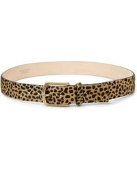 Streets Ahead Leopard-Print Calf Hair Belt - Multicolor