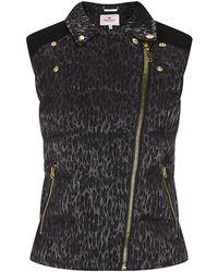 Juicy Couture Leopard Print Gilet - Multicolour