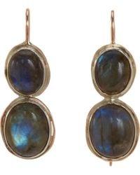 Sandra Dini Labradorite Twodrop Earrings - Metallic