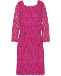 Diane von Furstenberg - Zarita Corded Lace Dress - Lyst