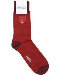 KENZO Techno Cotton Printed Socks - Red