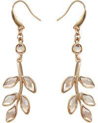 Aurora - 18ct Gold Plated Leaf Earring - Lyst